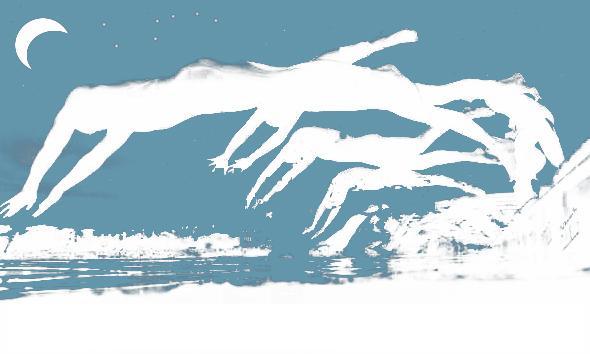 12. SVK-Schwimmnacht am 30.7.2021 im Dreisambad Kirchzarten